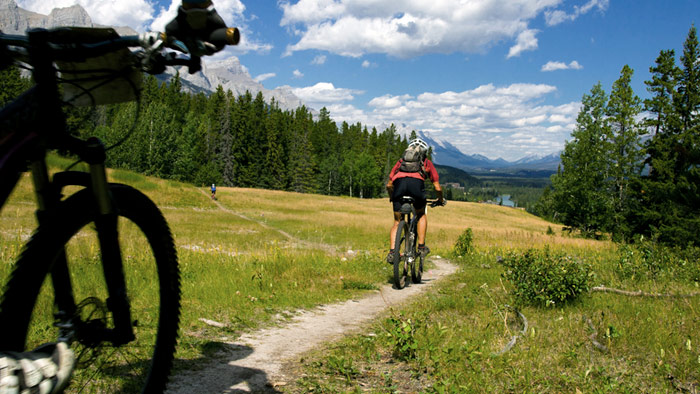 Getting Started in Mountain Bike Racing