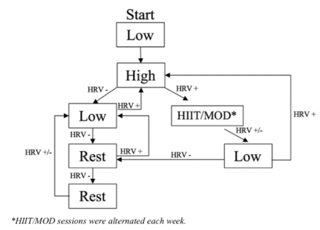 HRV-Guided Training Flow